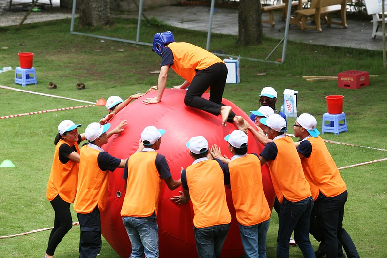 TEAMBUILDING - DOSE OF COLLECTIVE COHESION